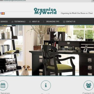 organize 300x300 - 7 Page Full Website