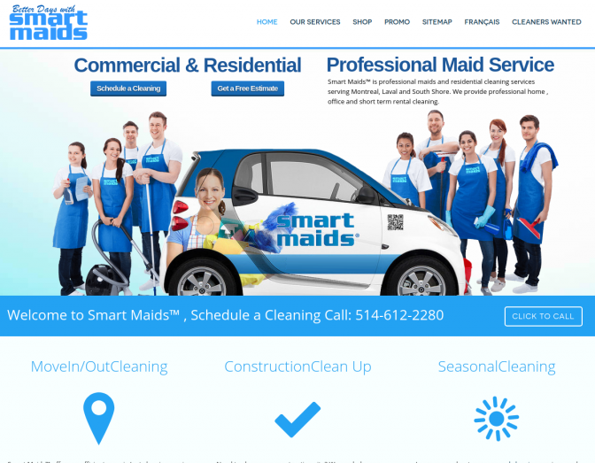 smart 672x523 - 7 Page Full Website